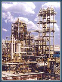 polyester plants, indian gelatin plants, polyester chips plants in india, gelatin plants from india, poy projects